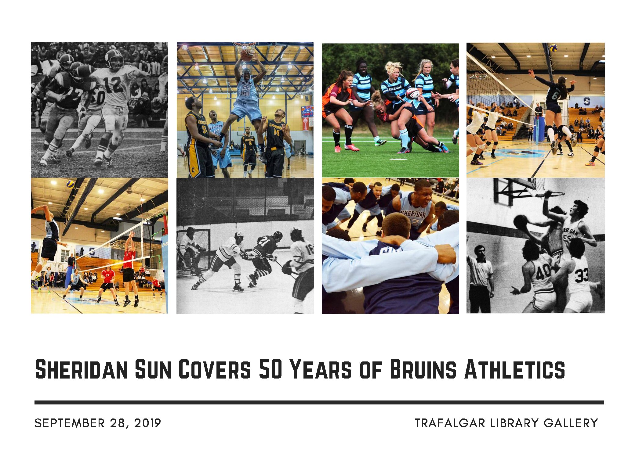 50 Years of Bruins Athletics
