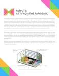 Remote Art From The Pandemic Pamphlet by Creative Campus Galleries